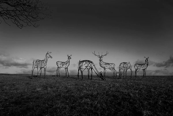andrew kay sculture stag aerial drone image photograph hovershotz cumbria